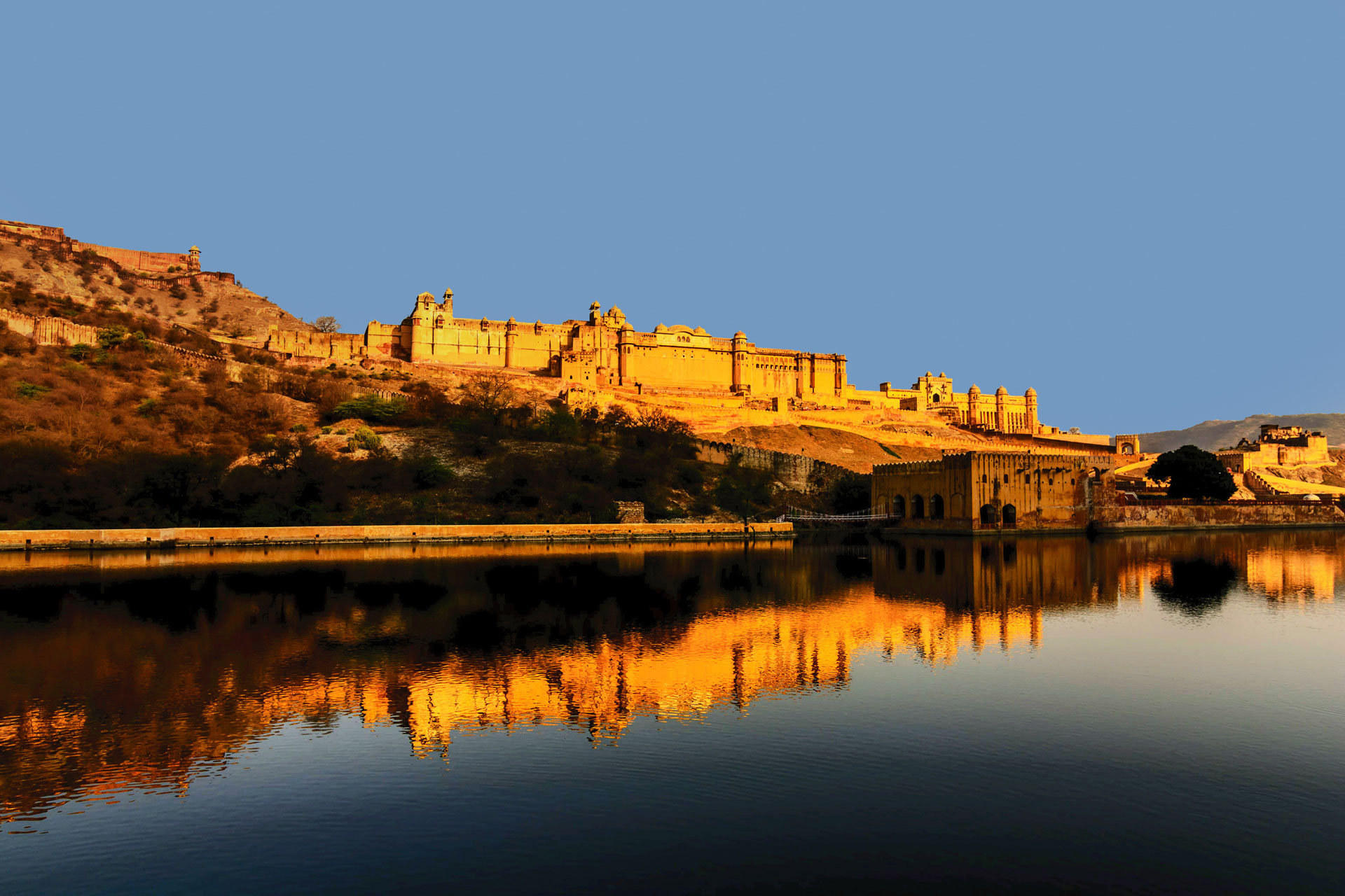 Rajasthan Wildlife With Forts